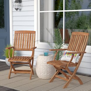 Beachcrest Home Joaquin Folding Patio Dining Chair (Set of 2)