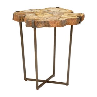 Fossil End Table