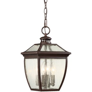 Darby Home Co Auer 4-Light Outdoor Hanging Lantern