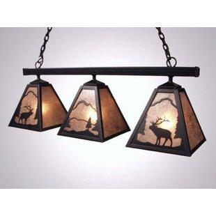 Steel Partners Elk Triple Anacosti Light Pendant
