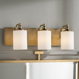 Comparison Dian 3-Light Vanity Light By Willa Arlo Interiors