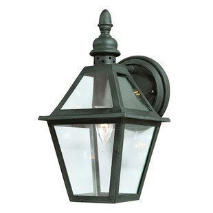 Darby Home Co Theodore 1-Light Glass Shade Outdoor Wall Lantern