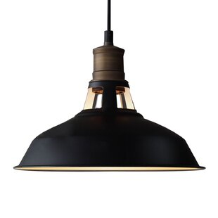1-Light Dome Pendant by CL..