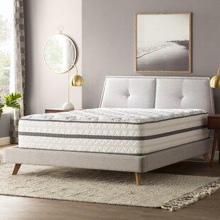 Wayfair Sleep 14