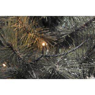 Micro 500-Light LED Fairy Lights By Konstsmide