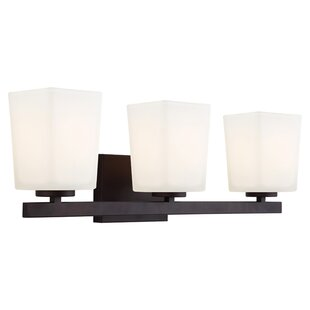 Latitude Run Cartwright 3-Light Vanity Light