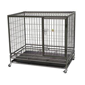Steel Pet Crate
