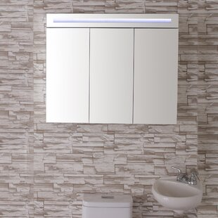 Colvard 36 x 30 Recessed or Surface Mount Medicine Cabinet with 3 Adjustable Shelves and LED Lighting By Orren Ellis