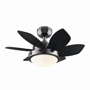 24″ Corry 6 Blade Ceiling Fan