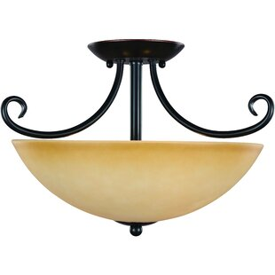 Essex 2-Light Semi Flush Mount by Hardware House