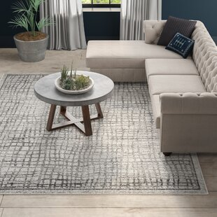 Connie Silver/Ivory Area Rug by Greyleigh