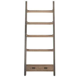 Ronan Patterned Library Ladder Bookcase