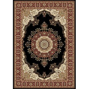 Best Choices Regency Black Area Rug By Home Dynamix