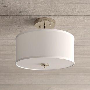 2 Bulb Ceiling Light Wayfair