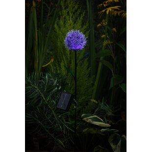 Forada Solar 1 Light LED Decorative And Accent Lights By Bloomsbury Market