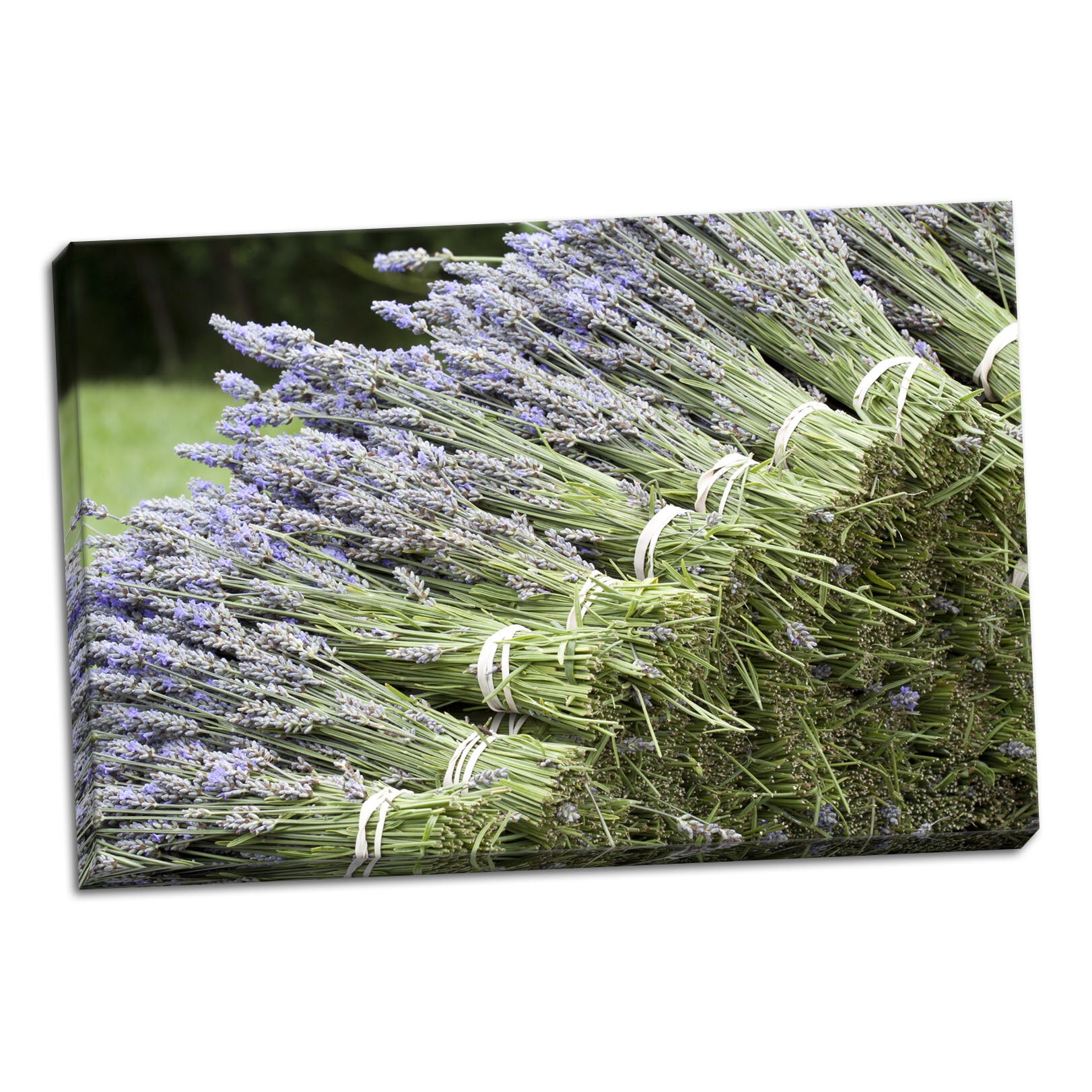 Ophelia Co Lavender Bunches Ii Photographic Print On Wrapped Canvas Wayfair