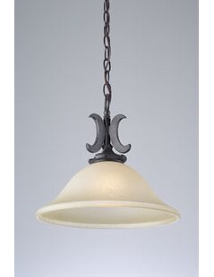 Fleur De Lis Living Huntingdon 1-Light Co..