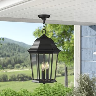 Affordable Price Busse 3-Light Outdoor Hanging Lantern By Darby Home Co