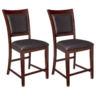 Paige 24.5 Bar Stool (Set of 2) DarHome Co