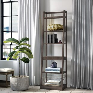 Hutto Ladder Bookcase