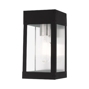 Wrought Studio Caterina Outdoor Wall Lantern