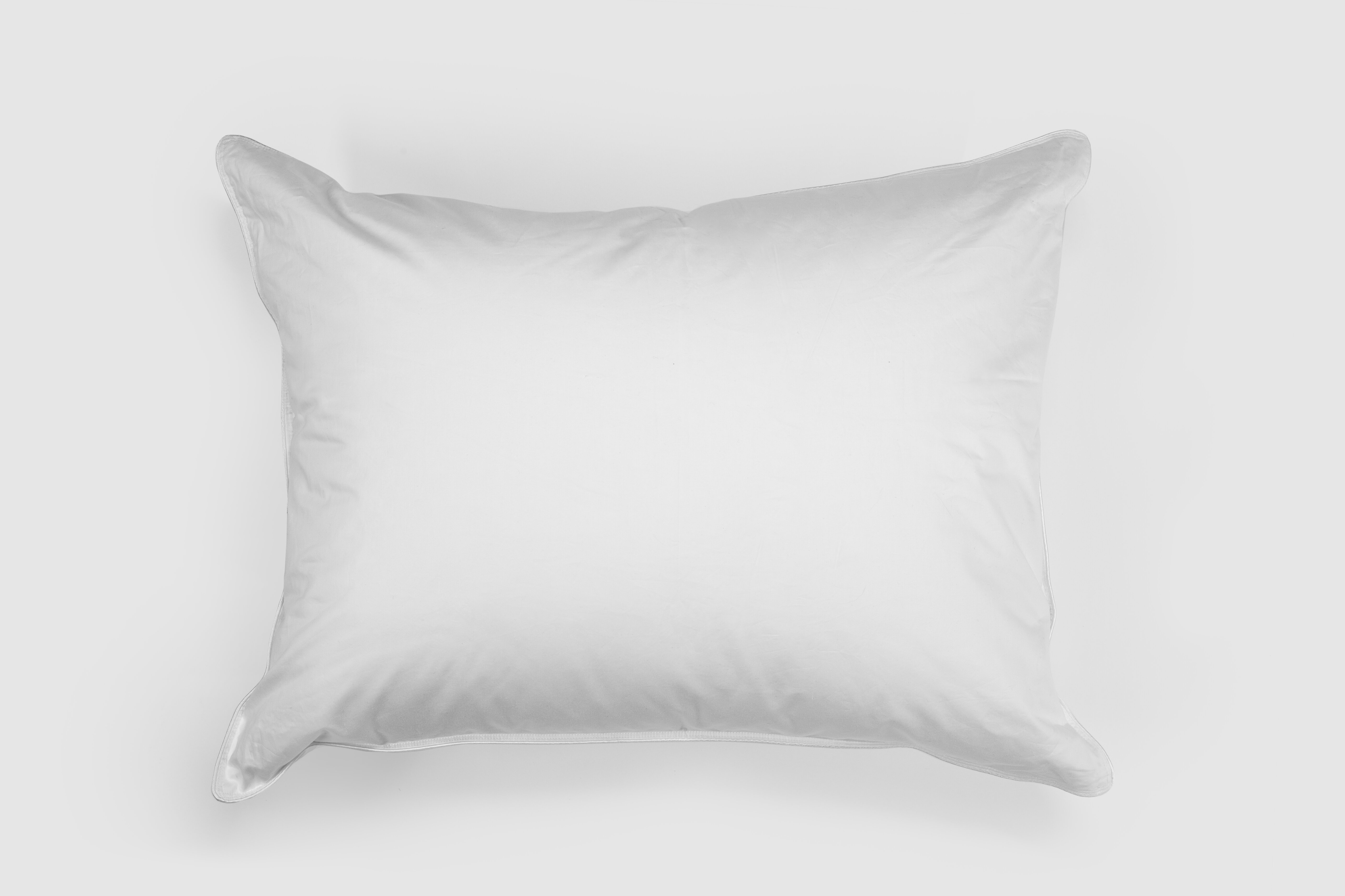 Alwyn Home Extra Firm Down Pillow Wayfair