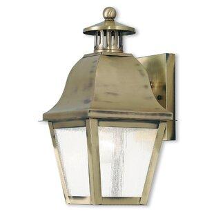 Goodhue 1-Light Outdoor Wall Lantern by Alcott Hill