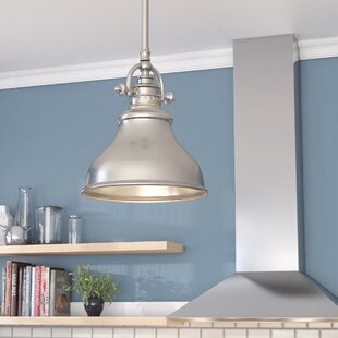 Beachcrest Home Mueller 1-Light Cone Pendant