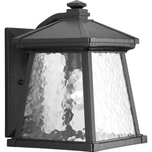 Triplehorn 1-Light Cast Aluminum Wall Lantern