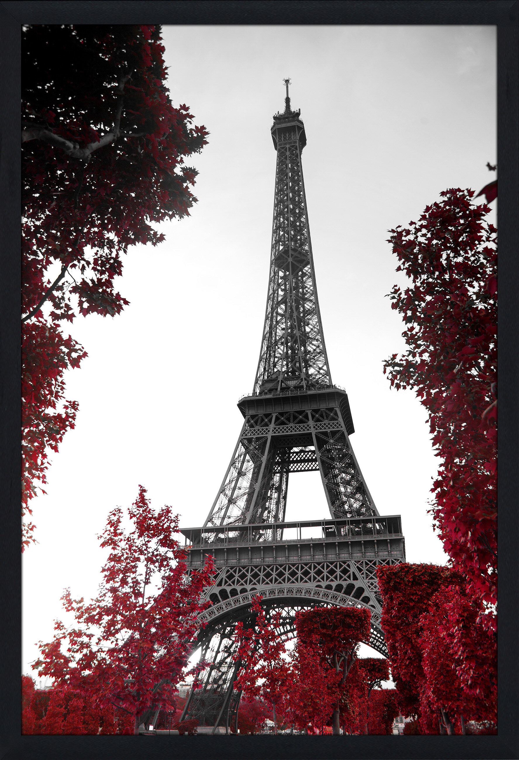 Pictureperfectinternational Eiffel Tower Framed Photographic Print Wayfair