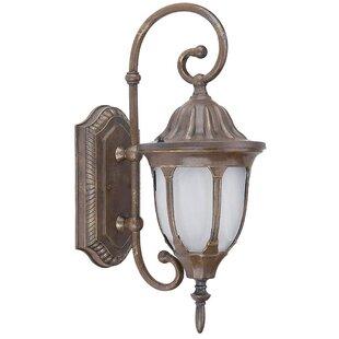 Yosemite Home Decor Merili 1-Light Outdoor Wall Lantern