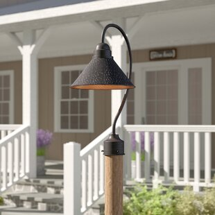 Laurel Foundry Modern Farmhouse Zuleika Outdoor 1-Light 20