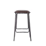 Swenson Metal Powder Coating 30 Bar Stool (Set of 2) by Williston Forge