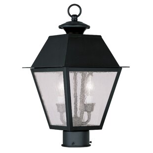 Cynda 2-Light Lantern Head by Darby Home Co