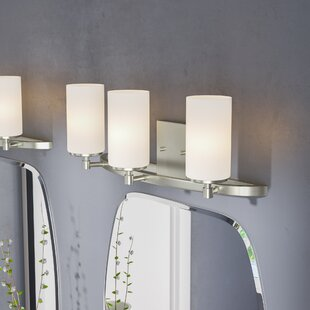 Wade Logan Haworth 3-Light Glass Shade Vanity Light