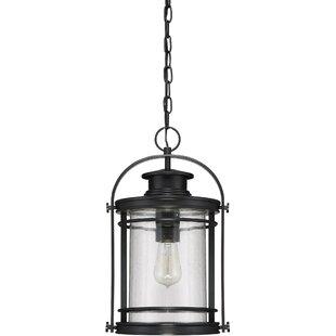 Breakwater Bay Ashton 1-Light Outdoor Hanging Lantern