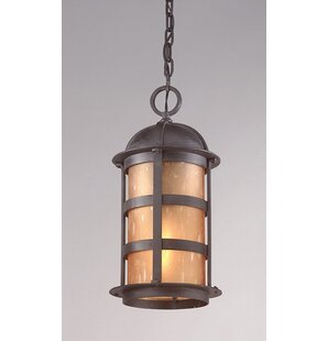 Darby Home Co Theodore 1-Light Outdoor Hanging Lantern
