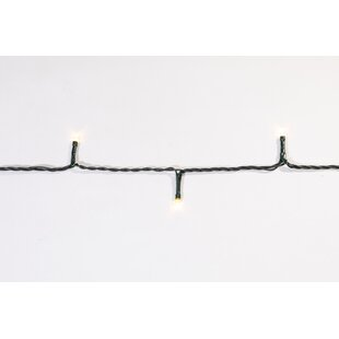 Deerfield Fit And Forget Multi Function Fairy Lights By The Seasonal Aisle