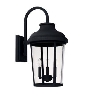 Alcott Hill Castor 3-Light Outdoor Wall Lantern