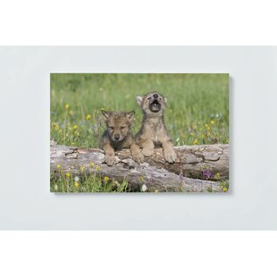 Wolves Motif Magnetic Wall Mounted Cork Board By Ebern Designs
