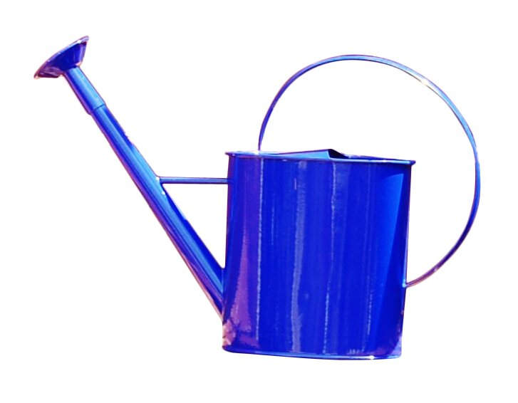 Metal 1 Gallon Watering Can With Long Spout