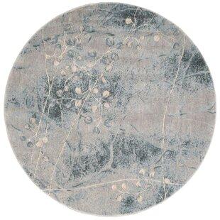 Patrica Silver/Blue Area Rug by Winston Porter