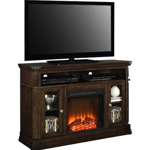 Ganado 47 TV Stand with Fireplace by Astoria Grand