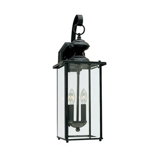 Darby Home Co Burrows 2-Light Outdoor Wall Lantern