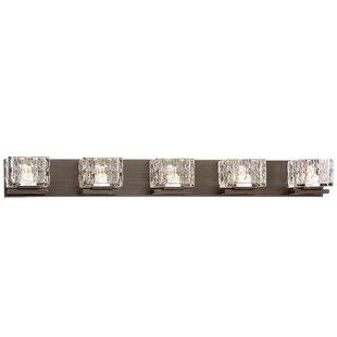 House of Hampton Mcentire 5-Light LED Vanity Light