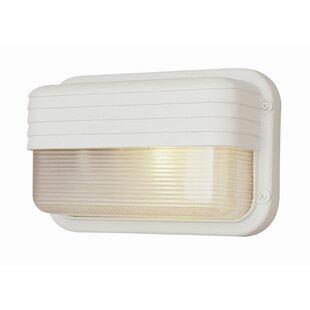 Winston Porter Dycus 1-Light Outdoor Flush Mount