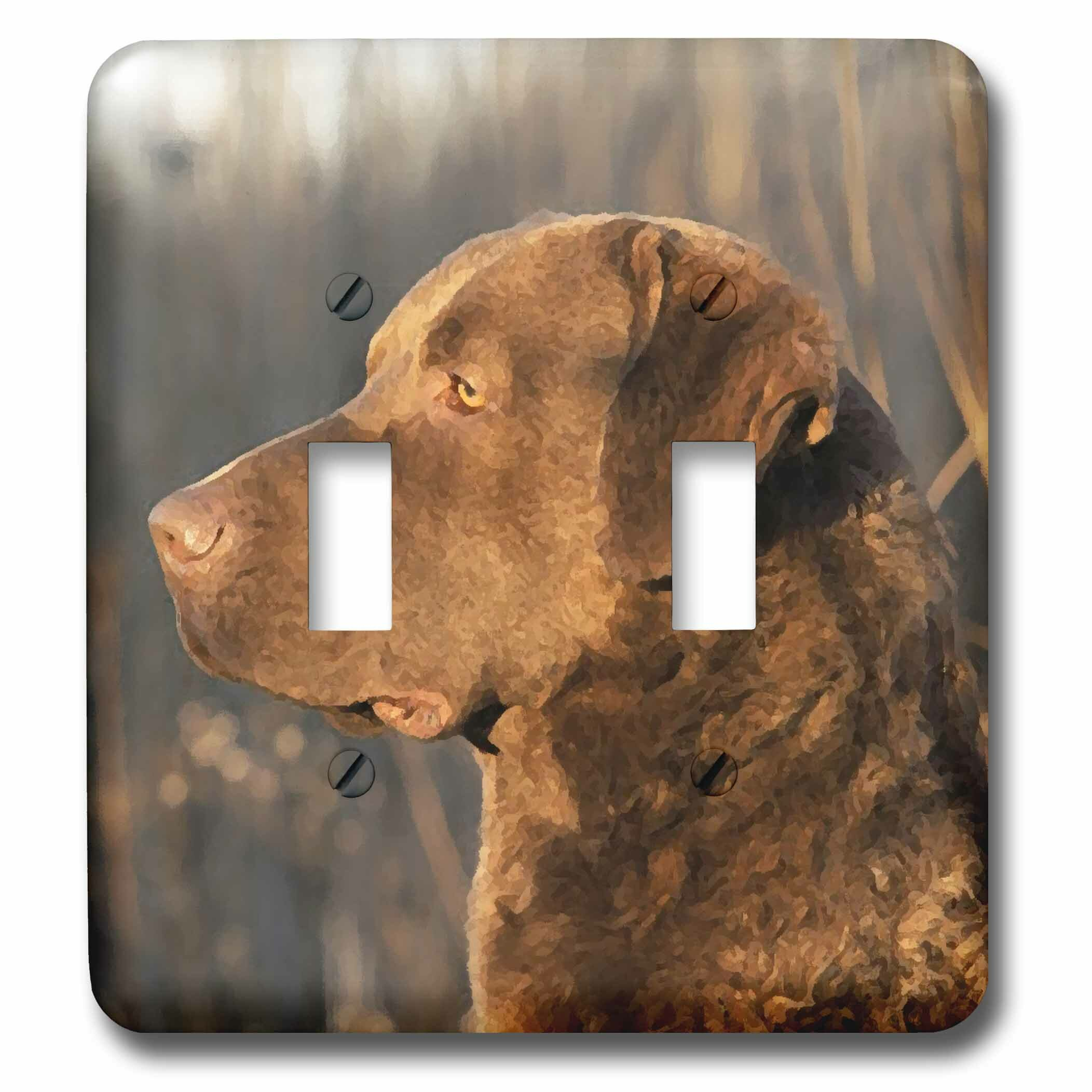 3drose Chesapeake Bay Retriver Portrait 2 Gang Toggle Light Switch Wall Plate Wayfair