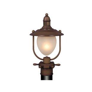 https://secure.img1-fg.wfcdn.com/im/93988472/resize-h310-w310%5Ecompr-r85/3303/33037836/bonaventure-1-light-lantern-head.jpg