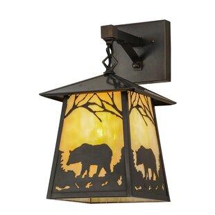 Order Greenbriar Oak 1-Light Outdoor Wall Lantern By Meyda Tiffany