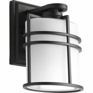 Josey 1 Light Outdoor Wall Lantern by Breakwater Bay